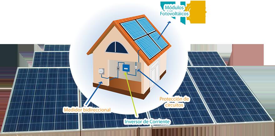 CFE paneles solares